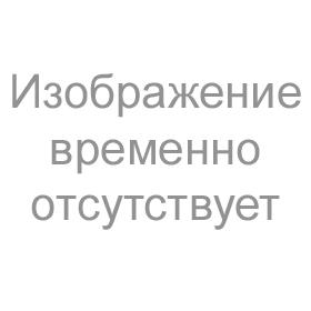 """Брошюра """"11 недель с ДЭНАСом"""""""